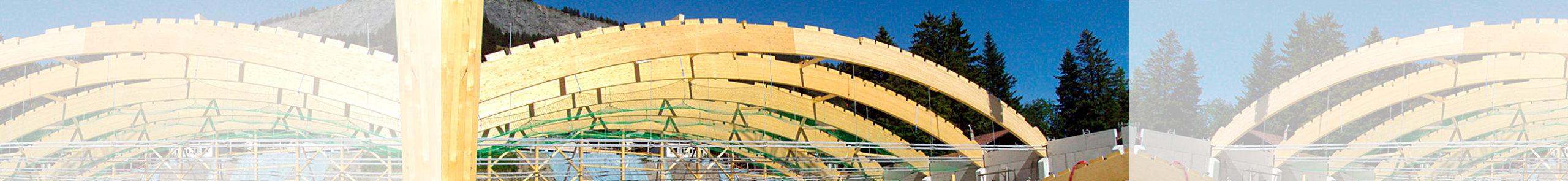 Holzbau Burn AG Adelboden, Bau Eisarena Adelboden