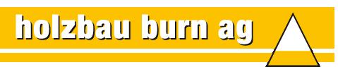 Logo Holzbau Burn AG Adelboden